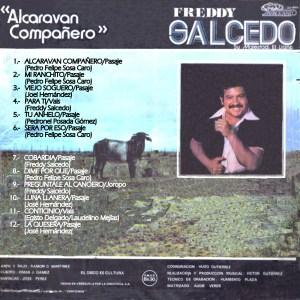 ALCARAVAN COMPAÑERO B copy
