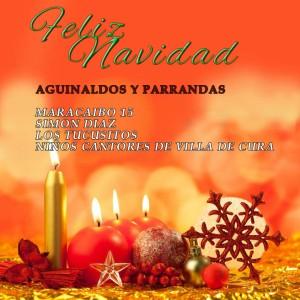 velas-de-navidad-21jpg